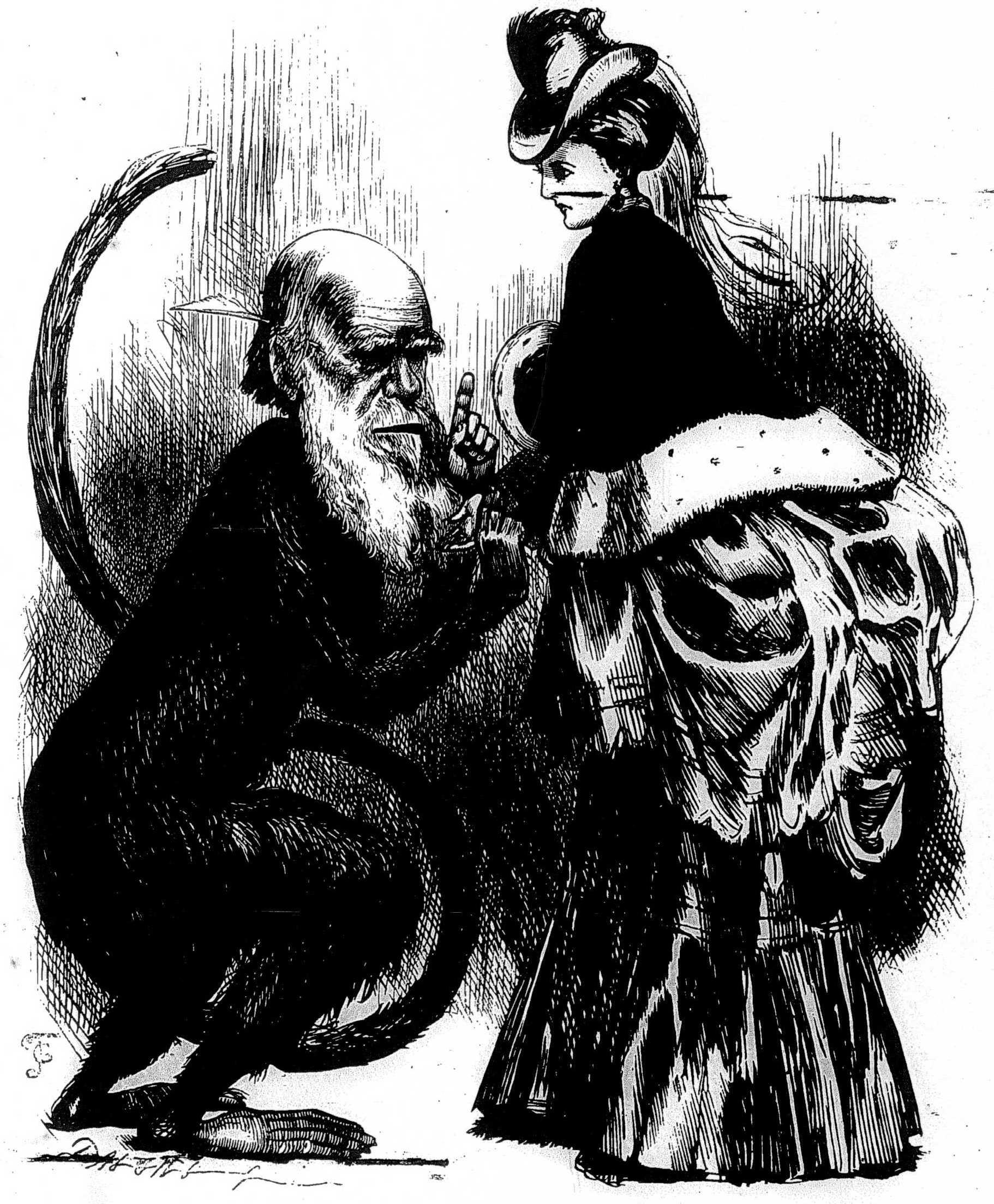 caricature of Darwin