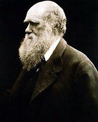 Cameron photo of Darwin