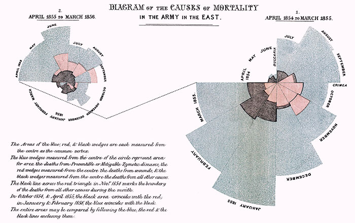 Nightingale graph