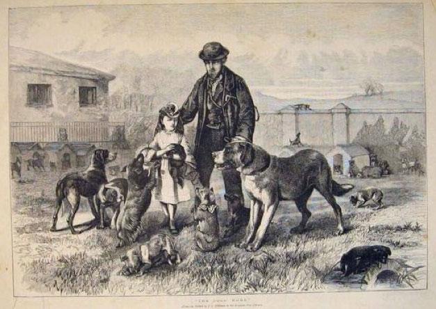 Dog's Home illustration