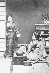 This is a photo of the Japanese Village taken by W.S. Gilbert