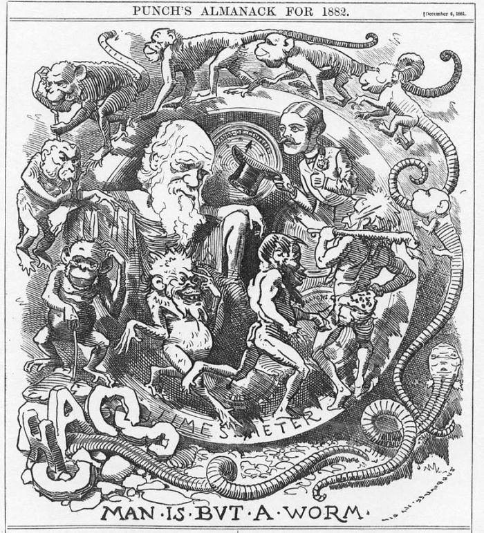 Punch magazine image caricaturing Darwin's evolutionary theories